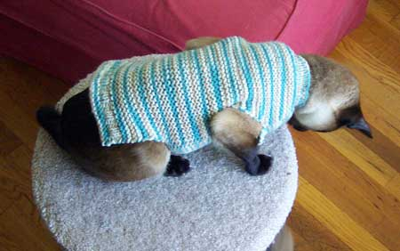 lsweater1.jpg